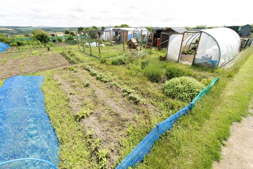 Duchy Allotments, Nansledan, Newquay.